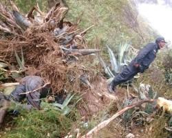 Quichuas: Bus Turismo Central se precipita al río Mantaro y deja nueve muertos,19 heridos y varios desaparecidos.!!